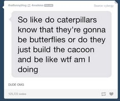 Caterpillars | 35 Tumblr Posts That'll Make You Reevaluate Your Entire Existence