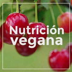 En pleno verano sólo apetecen cosas frías, por eso te traemos está deliciosa y fácil receta vegana para combatir el calor: Tomates rellenos de quinoa. Veganismo y cocina vegetariana