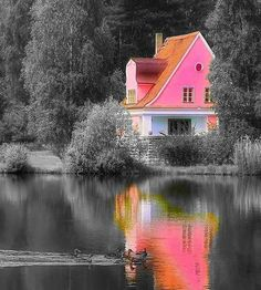 pink house by the lake,,,color splash,,,
