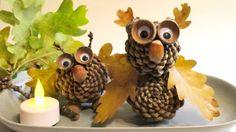 Podzimní dekorace ze šišek