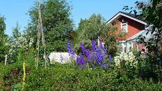Raholan siirtolapuutarha, Tampere
