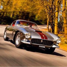 "4,715 Likes, 29 Comments - FERRARI ONLY ! (@ferrari.lovers) on Instagram: ""1961 Ferrari 250 gt SWB Berlinetta #2335GT very rare right hand drive with a competition engine."""