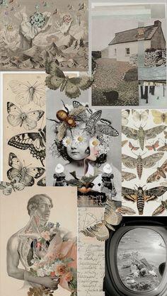 Iphone Wallpaper Tumblr Aesthetic, Iphone Background Wallpaper, Aesthetic Pastel Wallpaper, Tumblr Wallpaper, Aesthetic Wallpapers, Images Murales, Collage Background, Photocollage, Aesthetic Collage