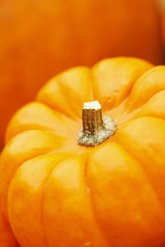 Orange   Arancio   Oranje   オレンジ   Colour   Texture   Style   Form   Pattern   pumpkin