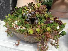 Fairy Houses For The Garden | ... : Mini structures create tiny homes in fairy gardens | OregonLive.com