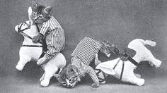 Vintage lolcat #2  via http://www.brain-magazine.com/article/page-pute/9434-Les-LolCats-existaient-d%C3%A9j%C3%A0-en-1870