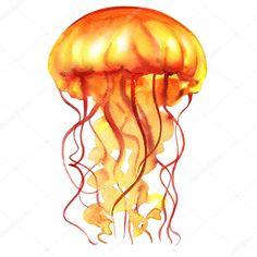 Resultado de imagen para medusa fondo del mar