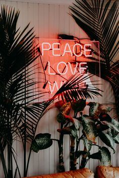 Best 20+ Neon Pictures | Download Free Images on Unsplash