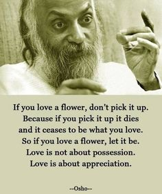 "This quote is beyond amazing.  ""If you love a flower, don't pick it up..."""