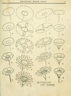 Para dibujar flores y tal vez aga algún albun de cómo dibujar o hacer arte en 3d