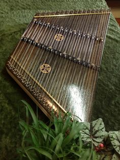 Black Bog Oak Hammered Dulcimer - I would love to learn how to play one of these!
