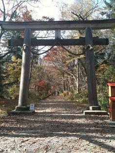 Okunoin Togakushi,Nagano 2009 Oct