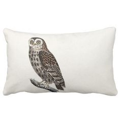 >>>Are you looking for          	Vintage Owl Illustration - 1800's Birds Templates Pillows           	Vintage Owl Illustration - 1800's Birds Templates Pillows in each seller & make purchase online for cheap. Choose the best price and best promotion as you thing Secure Checkout you can t...Cleck Hot Deals >>> http://www.zazzle.com/vintage_owl_illustration_1800s_birds_templates_pillow-189360166346304636?rf=238627982471231924&zbar=1&tc=terrest