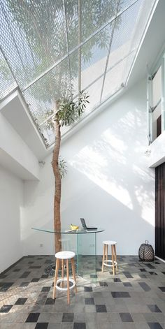 House Architecture - entrance starts by a front courtyard with a tree as a welcoming vocal point of Split house Patio Interior, Interior Exterior, Home Interior Design, Interior Architecture, Chinese Architecture, Futuristic Architecture, Tree Interior, Creative Architecture, Garden Architecture