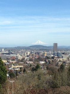 Lived there for 8 great years! City of Portland