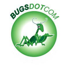 Original logo BUGSDOTCOM