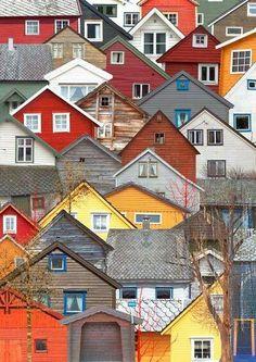 Bela composição de imagem, jogo de cores e texturas...
