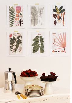 Free Botanical Art Prints for Your Walls. These would look awesome hung in a grid!