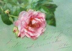 Passion-Vieux gravures anciennes, Vintage, rétro ... et divers objets d'artisanat: Bienvenue Année!