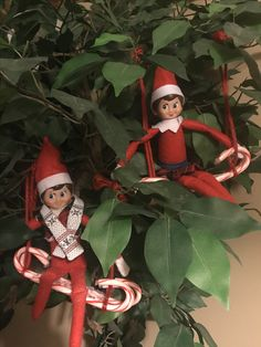 Elf on the Shelf returning this year by swinging into the holiday season!
