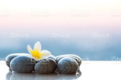 Plumeria flower and stones for spa background royalty-free stock photo