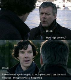 Lestrade:  How high are you? Sherlock:  Five minutes ago I stopped to let a pine cone cross the road because I thought it was a hedgehog.