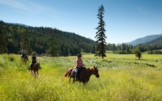 Dude ranch vacation Special Offers for May 2012, from Tod Mountain Ranch in British Columbia