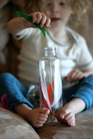 Sensory Discovery Bottles for Baby/Infant or Toddler