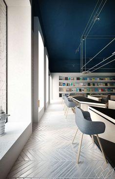 science cafe+ library - chişinău - anna wigandt - 2013