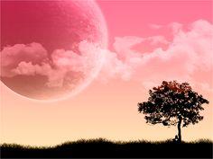 Roze-achtergronden-roze-wallpapers-roze-achtergrond-hd-28.jpg (1600×1200)