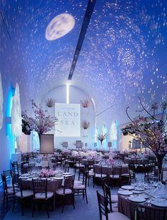 Star Wedding Themes | Wedding Ideas