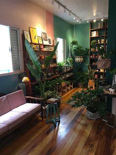 Botanique Café Bar Plantas