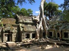 Ta Prohm besteht aus einem Tempel, einem Kloster, einigen kleinen Gebäuden und ist umgeben von einer Mauer mit Türmen und Gopurams