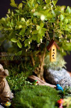 Miniature Garden Birds and Birdhouse | Lush Little Landscapes