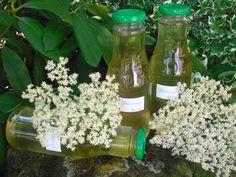 Holunderblütensirup, ein schönes Rezept aus der Kategorie Haltbarmachen. Bewertungen: 116. Durchschnitt: Ø 4,6.