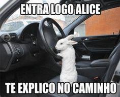 Vai ALICE TO ATRASADO!