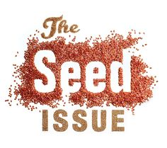 How to Avoid Monsanto Vegetable and Flower Seed