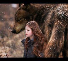 amanecer 2, renesme, wolf, lobo, girl (amor de lobo)