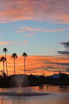 Gorgeous sunsets in Arizona -this was in Oakwood Country Club Sun Lakes AZ in Dec 2014