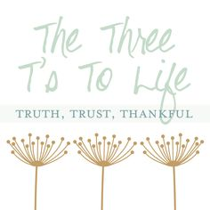Thankful - how to live your life by the three t's - xoxo ItalianGem I Want To Know, Live Your Life, Law Of Attraction, Third, Trust, Thankful, Place Card Holders, Lifestyle