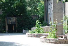 moestuintjes en insectenhotel op groen schoolplein