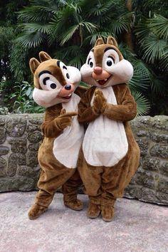 tic & tac / chip & dale in adventureland # disney Walt Disney World, Gif Disney, Cute Disney, Disney Magic, Disney Art, Disney Worlds, Disney Characters Pictures, Disney Pictures, Tic Et Tac Disney