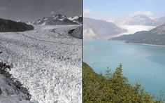 Muir Glacier in Alaska in 1941 and in 2004.  Sadly this is one train wreck that is going to happen, there are just too many conflicting interests in the world for a sufficient consensus to be formed and any significant action to be taken before it is way too late.