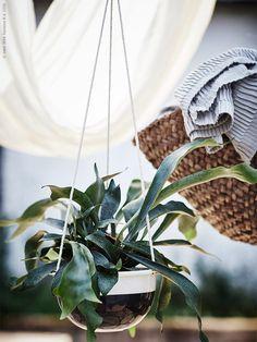 Sommar i sikte! | IKEA Livet Hemma – inspirerande inredning för hemmet