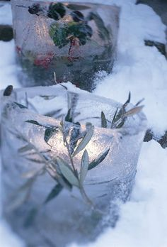 ice lanterns with flowers/herbs