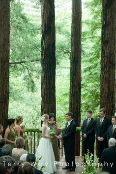 Amphitheatre of the Redwoods at Pema Osel Ling | Wedding and Event Venue | Santa Cruz Mountains, CA | Redwood Forest Wedding | Photo By Terry Way