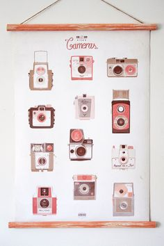 127&620 cameras canvas poster - vintage educational chart illustration CAP2002. $70.00, via Etsy.