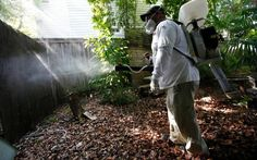'It's to let them know there are concerns [about GM mosquitoes] from people they…