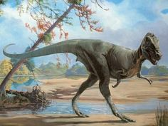 """Measuring about 30 feet meters) long, the Late Cretaceous tyrannosaur Daspletosaurus was a fearsome predator with a name meaning """"frightful reptile. Dinosaur Images, Dinosaur Pictures, Dinosaur Funny, Dinosaur Art, The Good Dinosaur, Prehistoric World, Prehistoric Creatures, Reptiles, Mammals"""