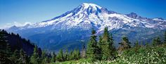 See Mount Rainier